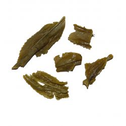 Organic Doo Mool Green Tea - wet leaf