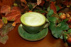 Green Tea Sweet Mix - Green Tea Latte