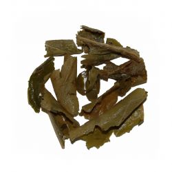 Lotus Leaf Tisane - wet leaf
