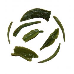 Ujeon Gamro Green Tea-  wet leaf